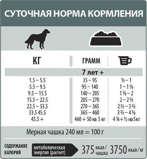 Выбираем корм для кошек старше 12 лет
