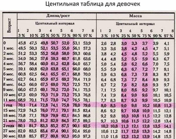 Вес котенка по месяцам: таблица | норма, по неделям, сколько весит