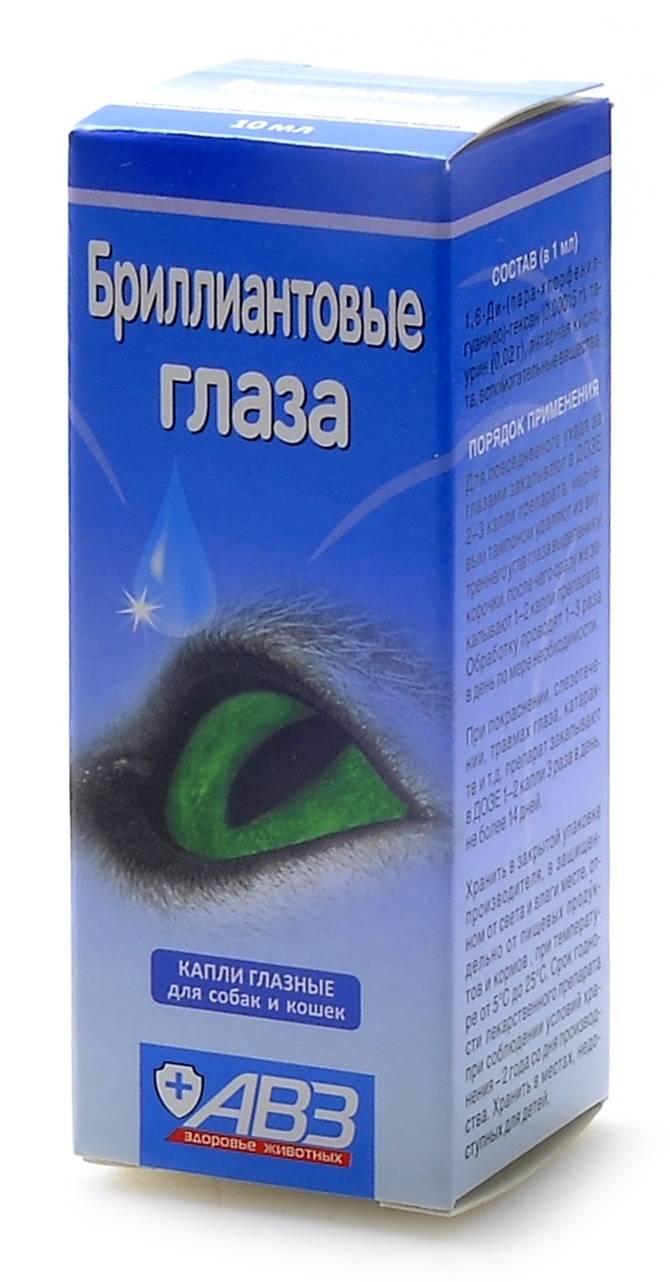 Чем закапать глаза кошке или котенку: обзор лечебных капель против воспалений