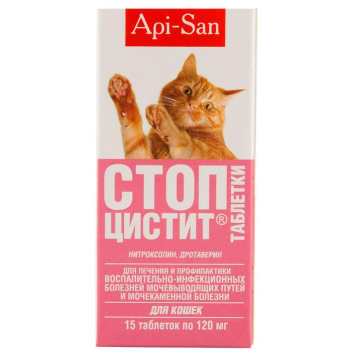 Сколько давать коту стоп цистит