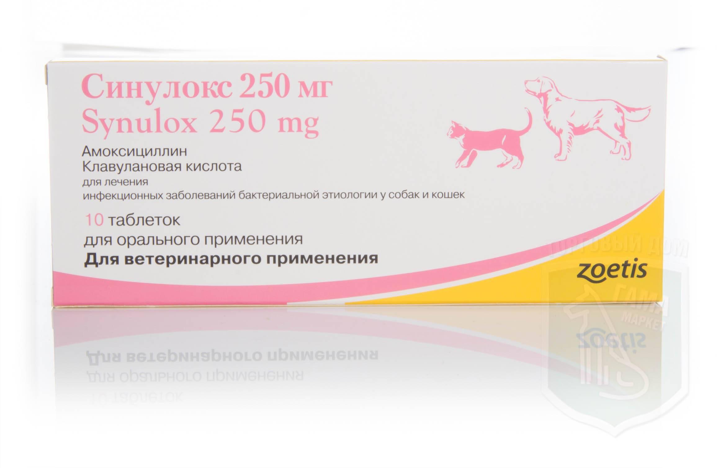Синулокс таблетки: инструкция по применению в ветеринарии (показания и противопоказания, дозы собакам и кошкам)
