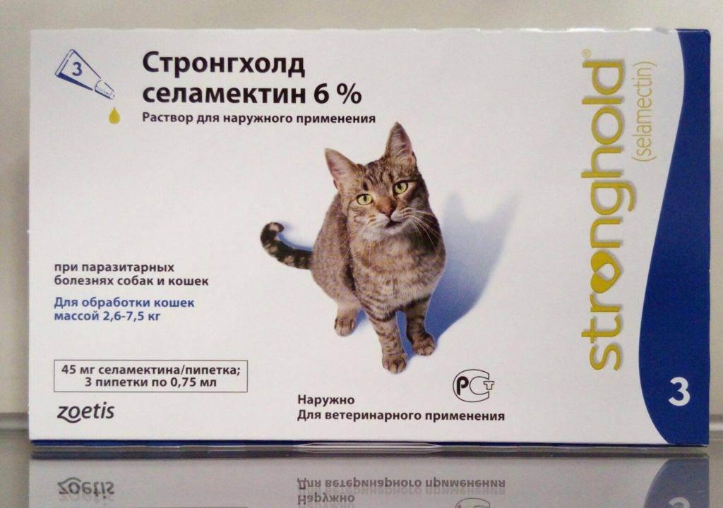 Стронгхолд для кошек: инструкция по применению капель, лечение котят, отзывы о препарате, аналоги
