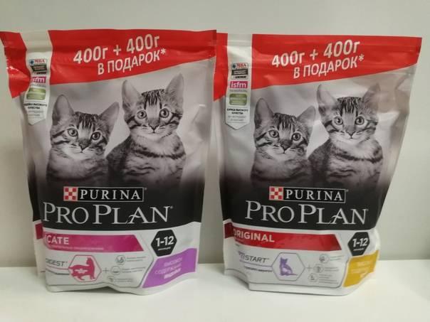 Преимущества сухих кормов для кошек по сравнению с натуральным рационом