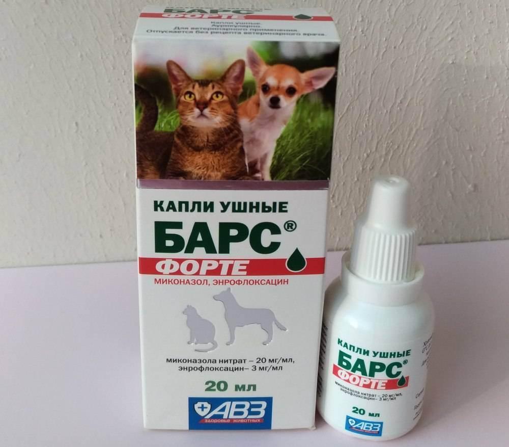Обзор и способ применения капель, спреев и мазей от ушного клеща у кошек