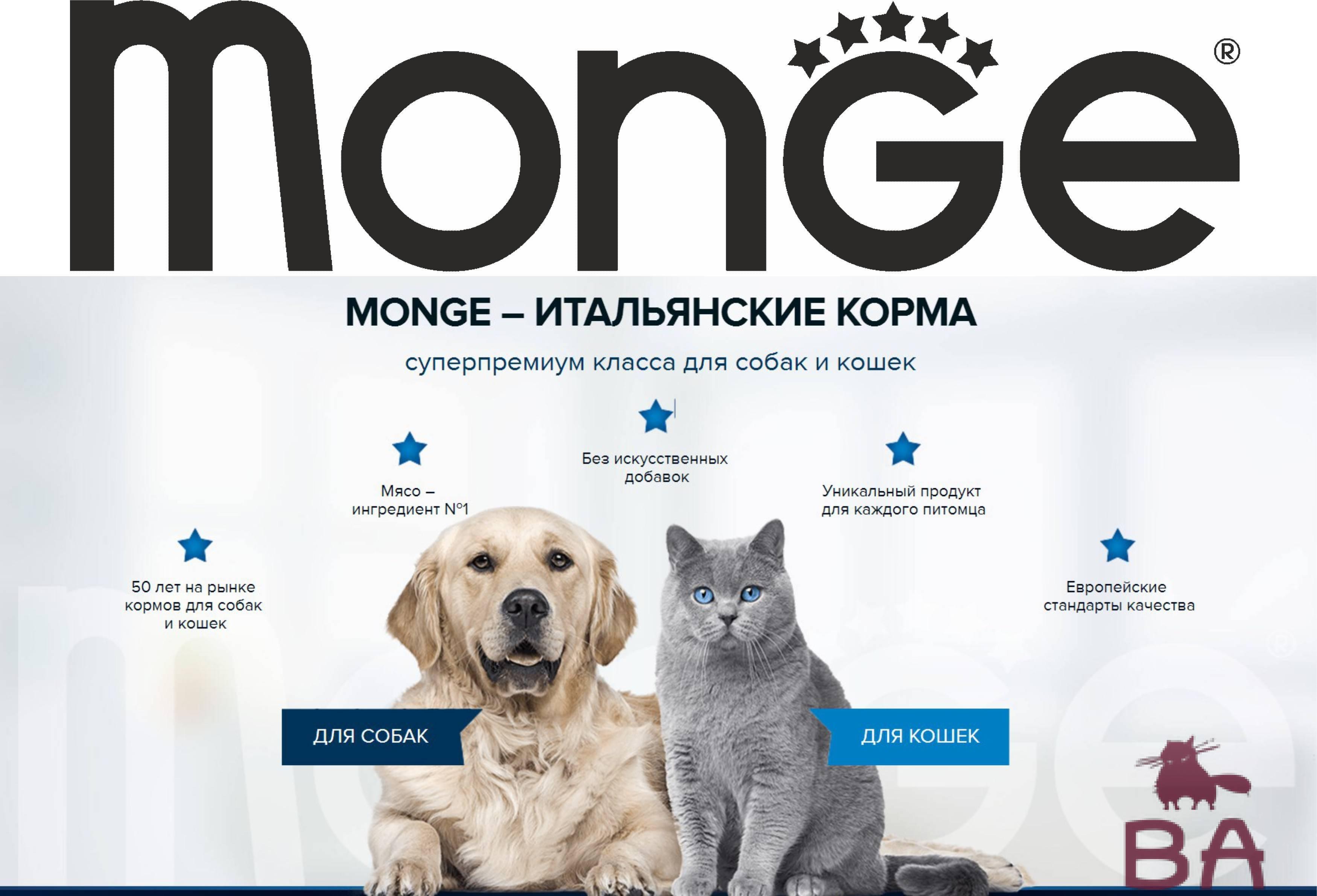 Корм monge для кошек: отзывы, где купить, состав