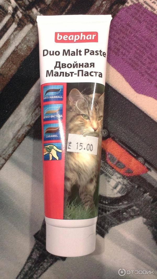 7 лучших паст для вывода шерсти у кошек: что выбрать и как давать - kotiko.ru