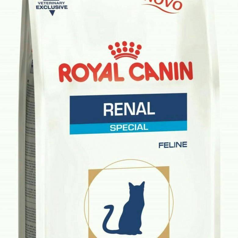 Препарат ренал – как правильно давать кошкам?