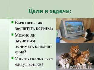 Как воспитывать котенка? действенные методы воспитания котов и кошек в возрасте 1-2 и 3-4 месяцев. воспитание маленьких котят других возрастов