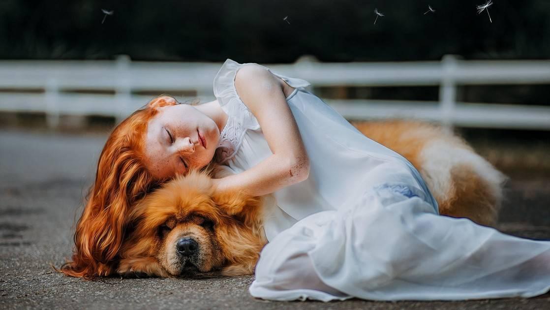 Стоит ли заводить ребёнку собаку?
