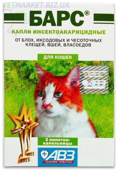 Капли барс — спасение от блох для любимых кошек