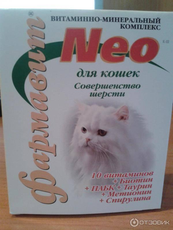 Витамины для кошек от выпадения шерсти - список и описание