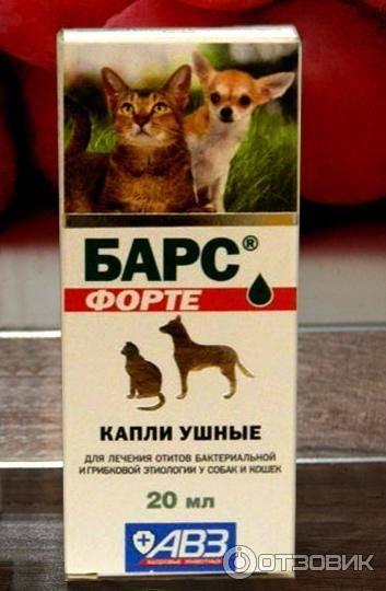 Инструкция по применению раствора для закапывания в уши «барс»: как использовать ушные капли для лечения кошек?