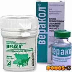 Ветеринарный препарат «веракол» (в таблетках, уколы): состав, показания и противопоказания, инструкция