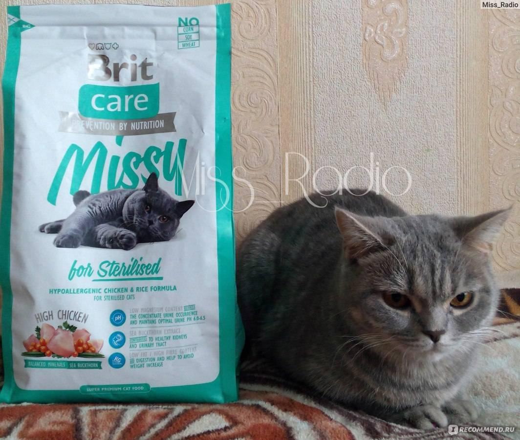 Состав, плюсы и минусы кормов для кошек «brit» – линеек premium и care – сухих и влажных, для котят и взрослых котов