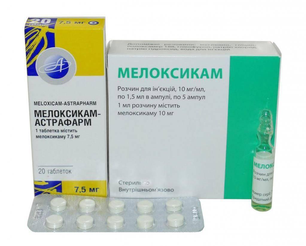 Мелоксикам для собак: инструкция по применению с дозировкой и отзывами. можно ли давать таблетки и как сделать укол суспензии?