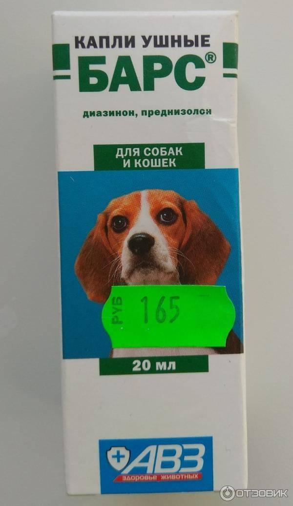 Показания к применению капель барс для собак — рассказываем по порядку