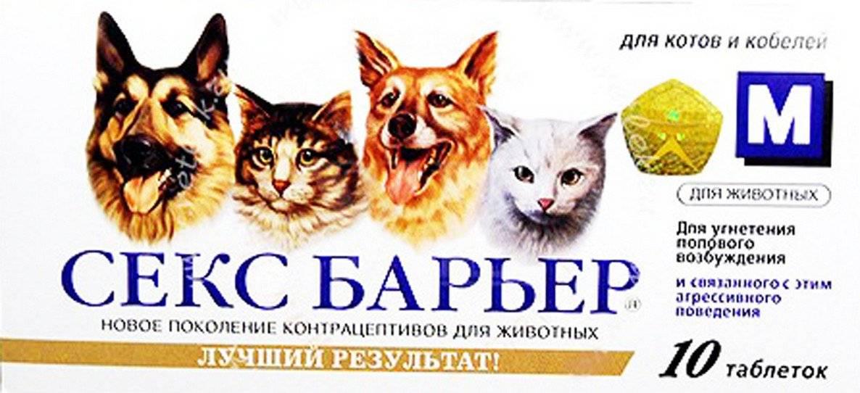 Противозачаточные для кошек длительного действия — zppp