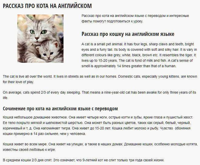 Tag archives: имена британцев