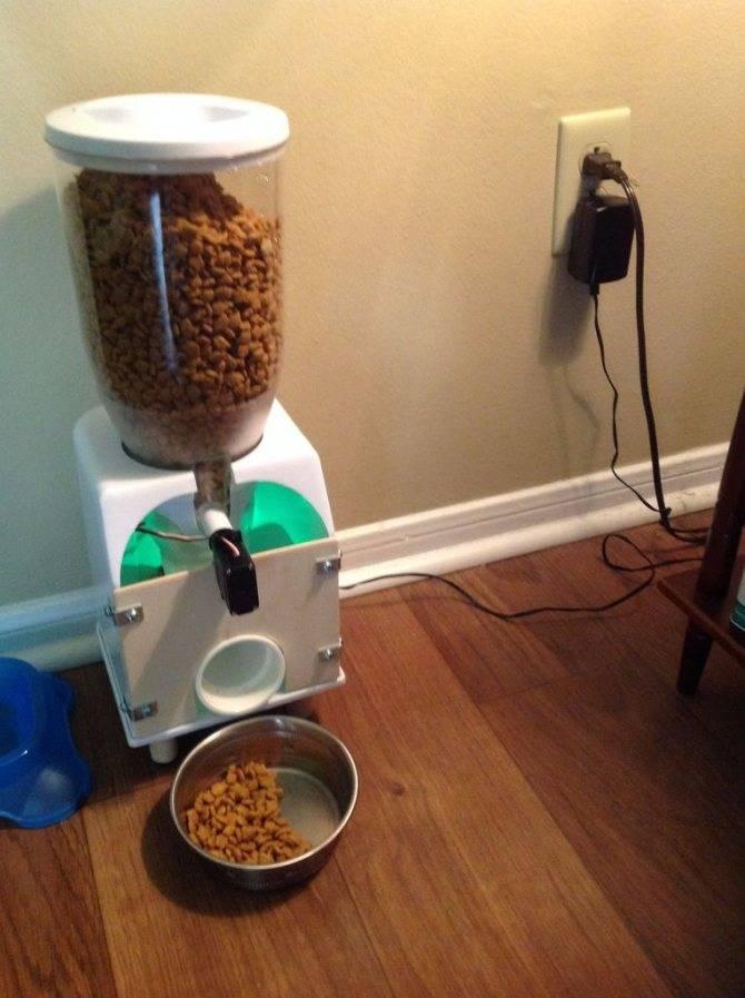 Автоматическая кормушка для кошек: обзор и рекомендации автоматическая кормушка для кошек: обзор и рекомендации