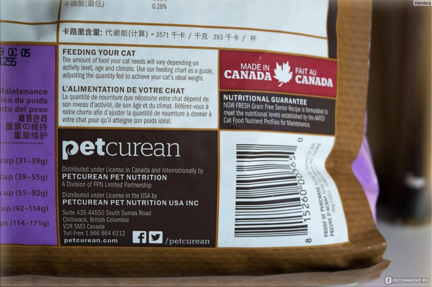 Корм для кошек now: 4 популярных вида, отзывы, стоит ли давать