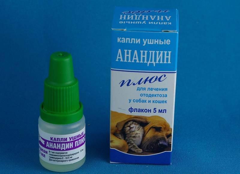 Капли от ушного клеща для кошек: правила применения, рейтинг лучших, отзывы
