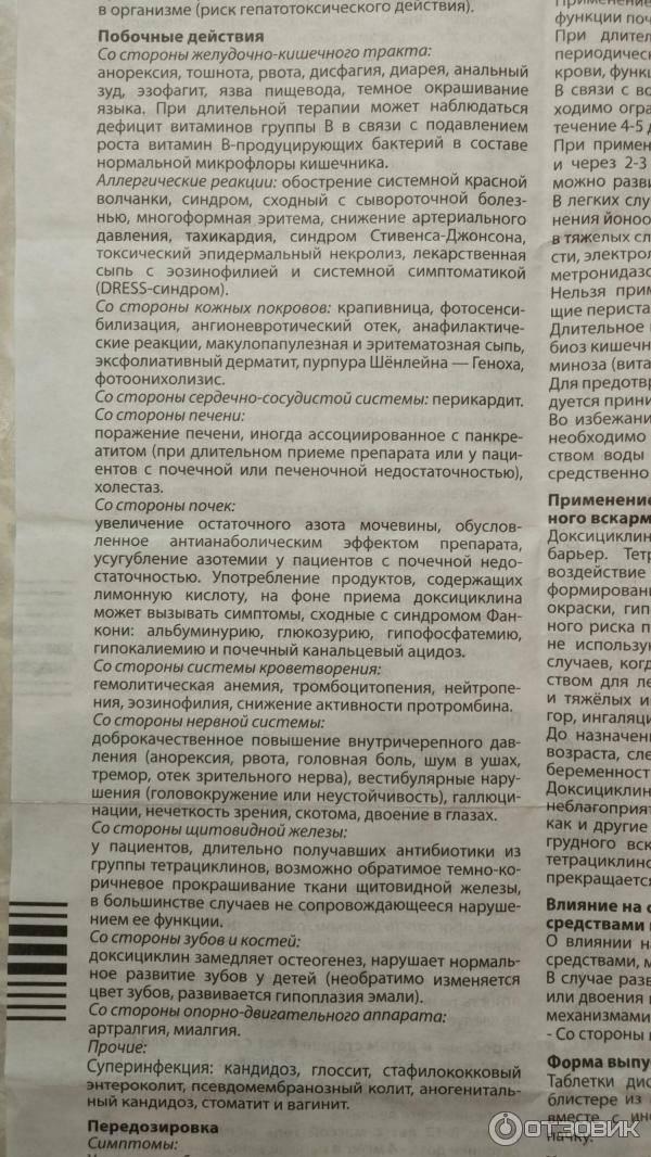 Как давать доксициклин кошке - oozoo.ru