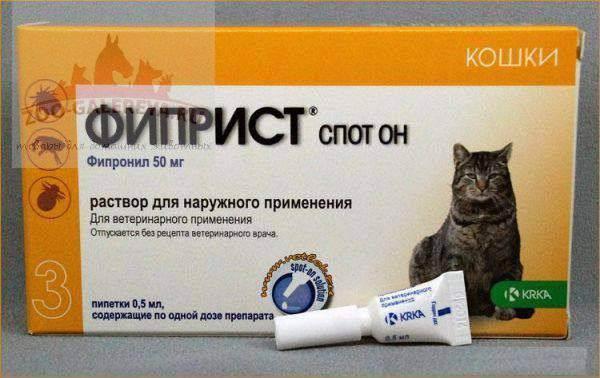 Капли от блох для кошек: правильно используем препарат