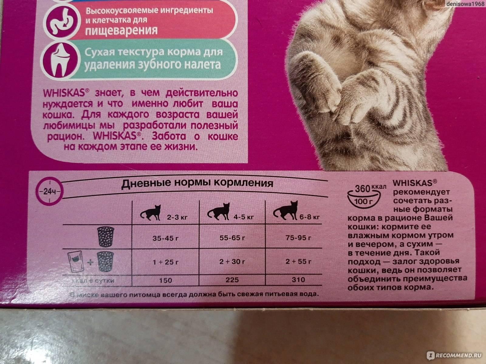 Сухой корм для кошек грандорф отзывы ветеринаров — grandorf kitten