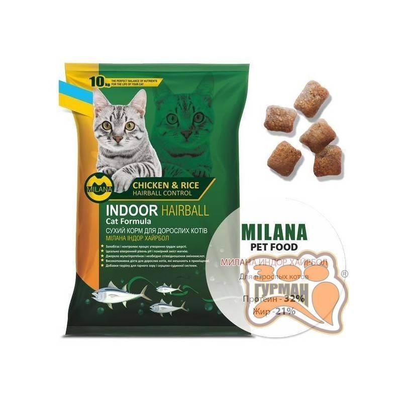 Когда и как можно давать сухой корм котенку?