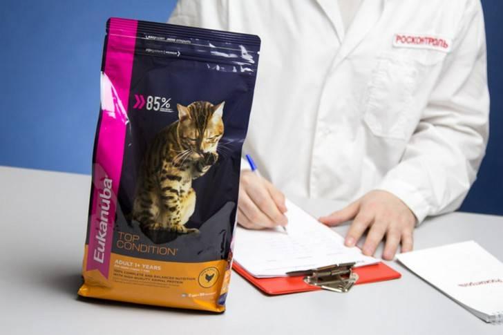 """Корм для кошек """"китикет"""" сухой и влажный в пакетиках: состав, плюсы и минусы продукта"""