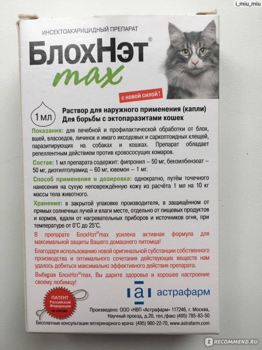Цестал для кошек: инструкция по применению, показания и противопоказания, аналоги, отзывы
