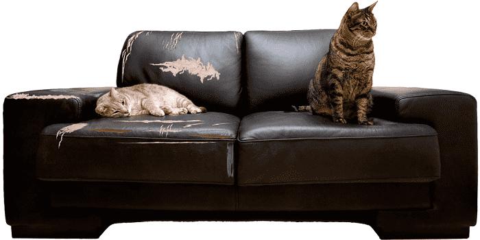Какую обивочную ткань лучше выбрать для дивана, популярные виды