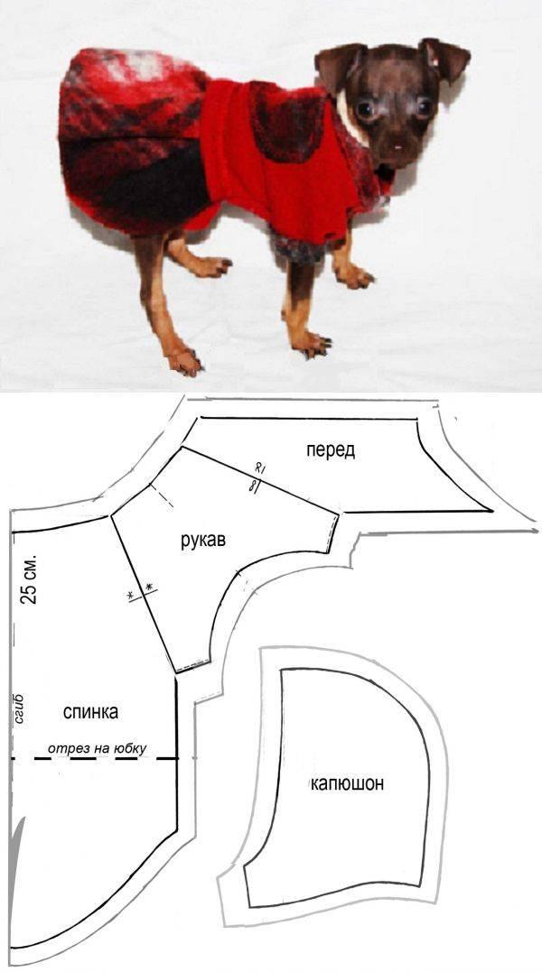 Шитье для животных