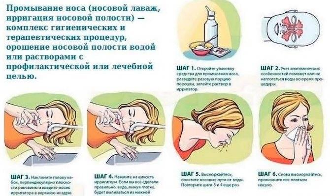 Как правильно промывать нос коту