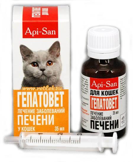 Гепатовет для кошек: инструкция и показания к применению, состав суспензии, аналоги
