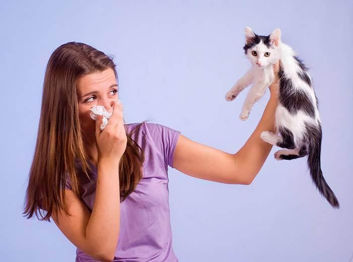 Аллергию на животных часто можно вылечить с помощью самих животных