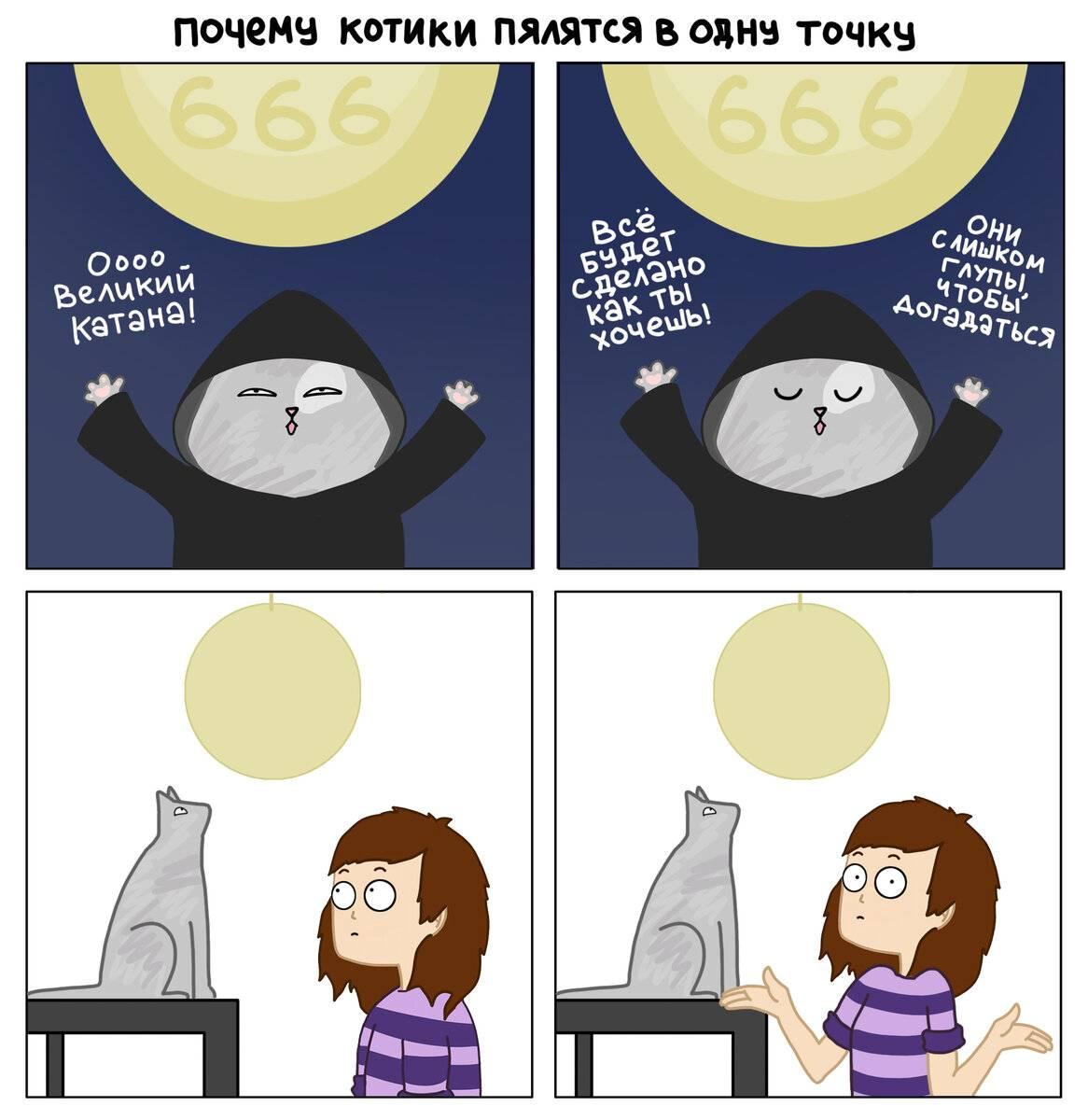 Что видят кошки, чем они опасны? что способны увидеть животные?