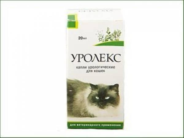 Стоп-цистит для кошек:  инструкция по применению, цена, аналоги