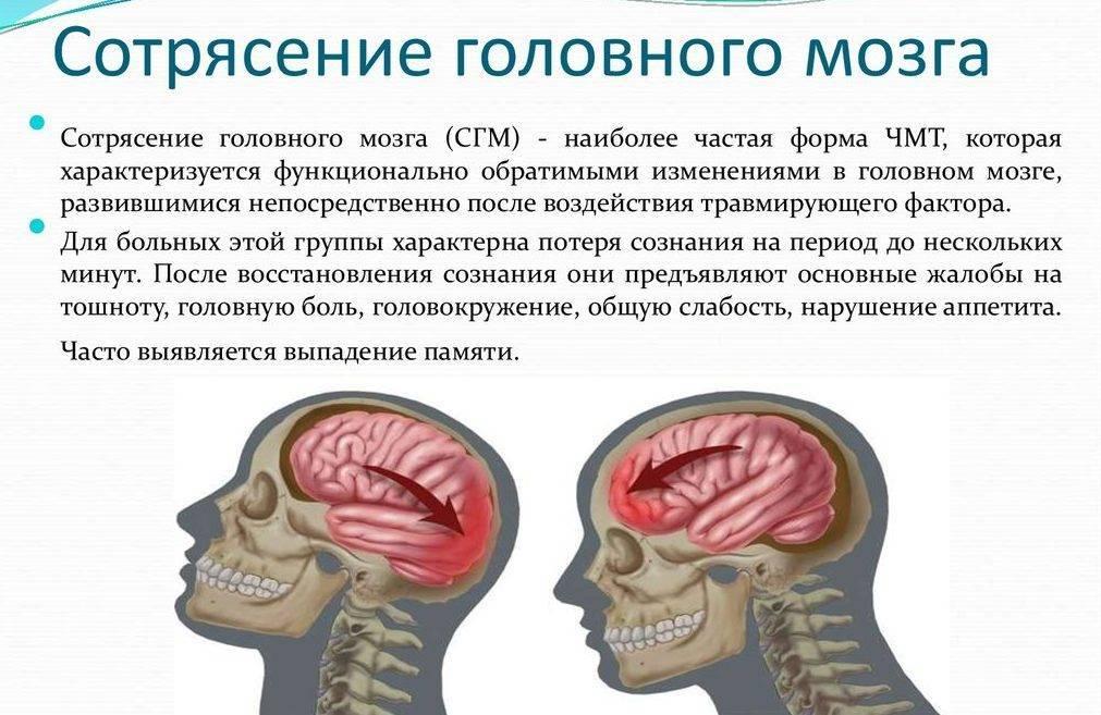 Ушиб мозга у кошек лечение