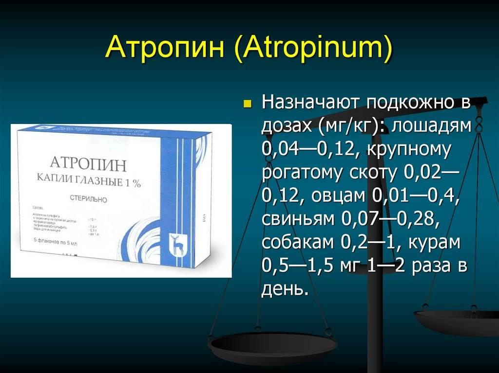 Глазные капли атропина сульфат — инструкция по применению для лечения детей, отзывы, цены и аналоги