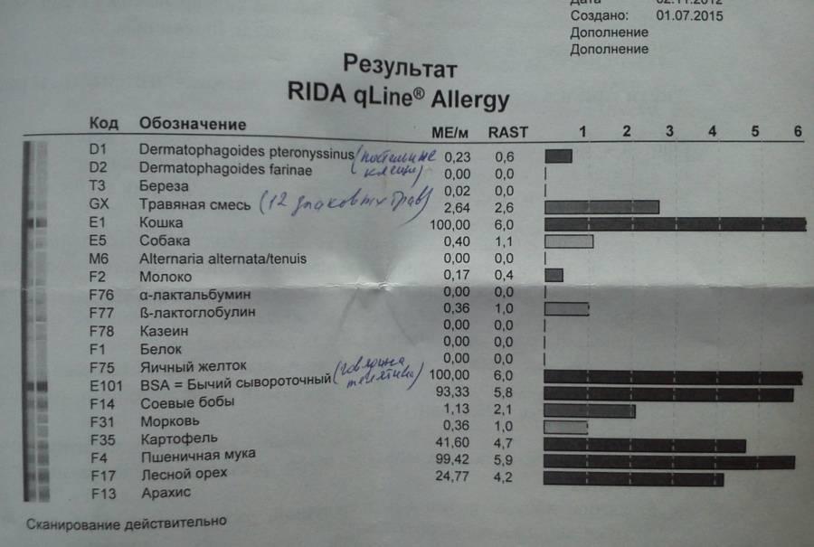 Как проявляется аллергия на мочу кошек: основные симптомы, лечение