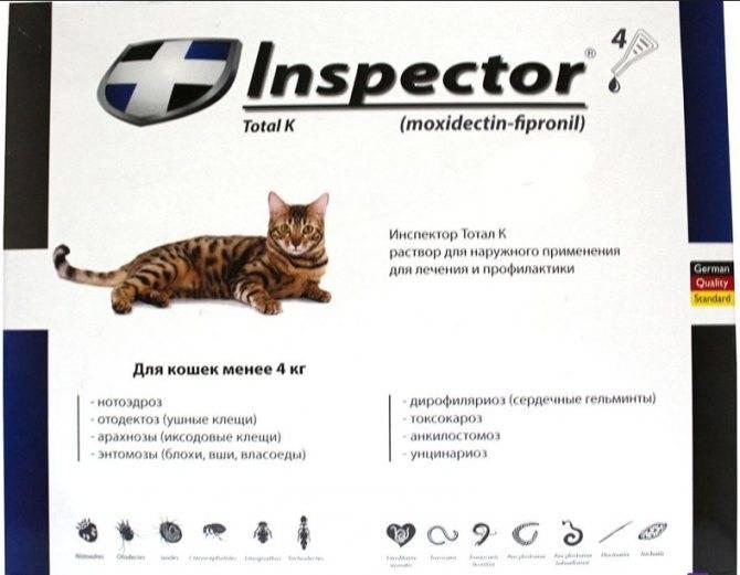 Применение капель от глистов и блох на холку для кошек, рекомендуемые лекарства. обсуждение на liveinternet