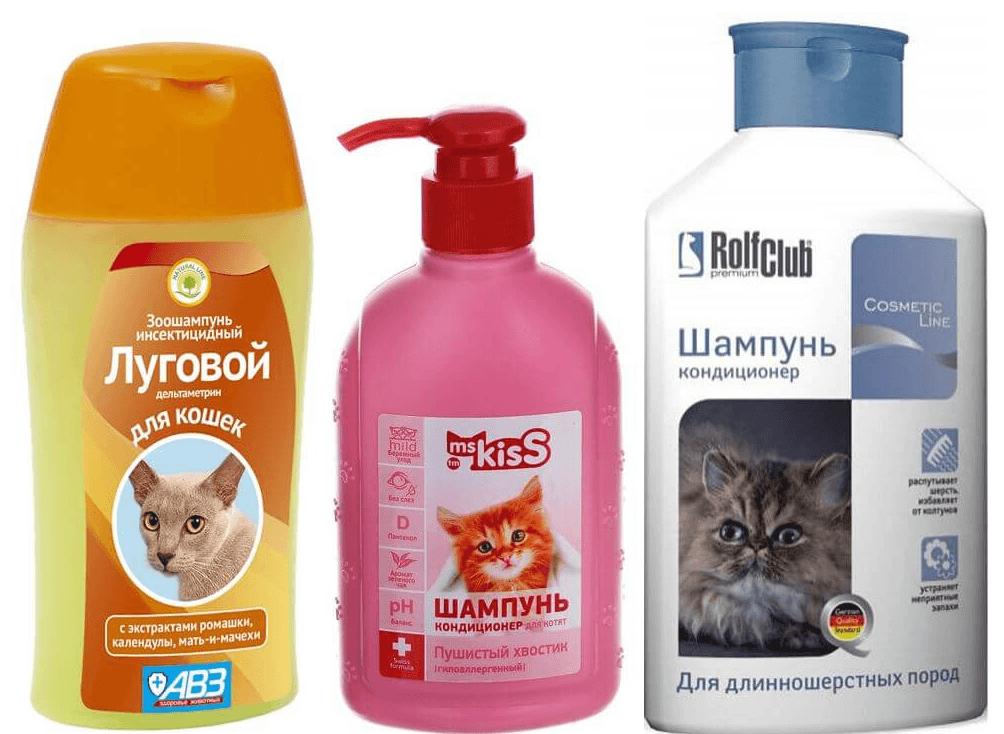 Как выбрать шампунь для кошек