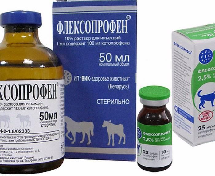 Лечение артрита и артроза антибиотиками: инфекционное воспаление суставов и костей
