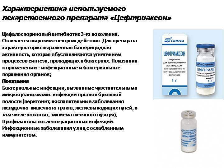 Синулокс для кошек, препараты от глистов