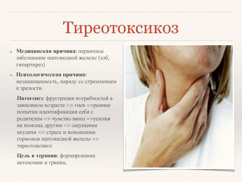 Заболевания щитовидной железы у кошек