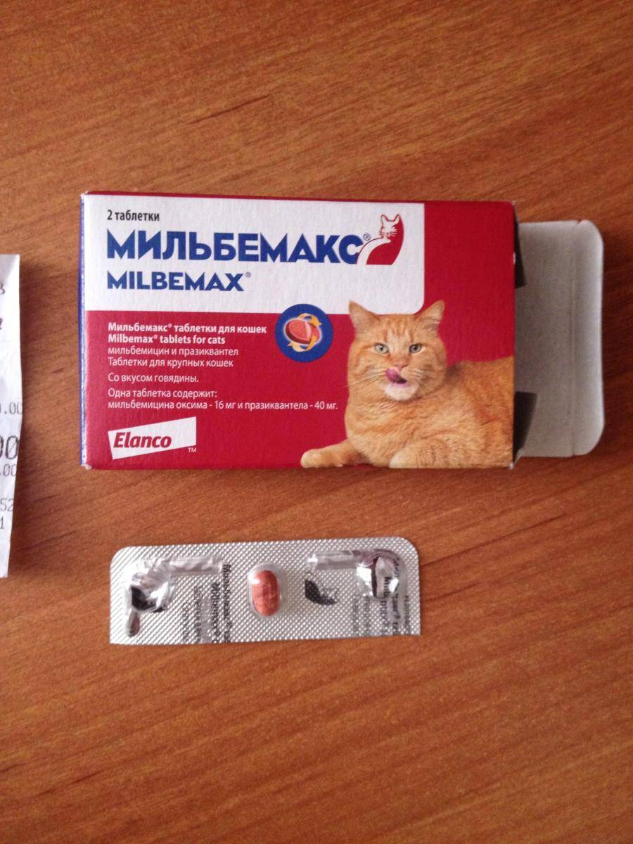 Инструкция по применению мильбемакса для для кошек