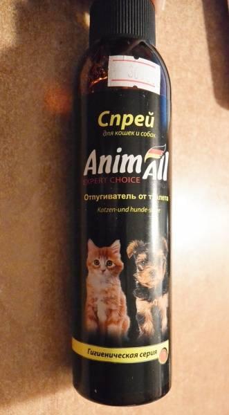 Какой запах не любят кошки: запахи отпугивающие кошек