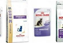 Диета для кота при мочекаменной болезни натуралка