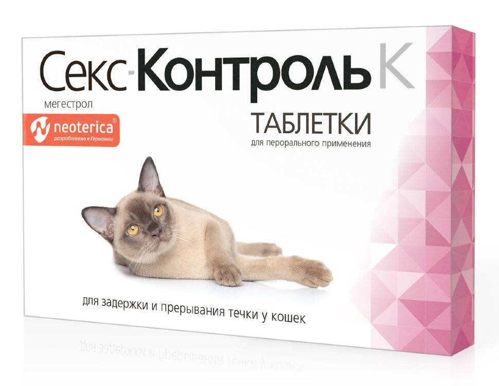 Уколы от течки: панацея или убийство? | dogkind.ru